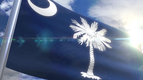 Waving flag of the state of South Carolina USA CG動画