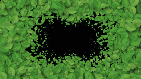 Beautiful Growing Green Leaves Covering the Screen. Growing Foliage Animation Footage