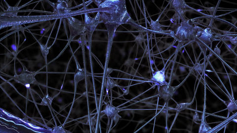 Synapses in the Brain Animation