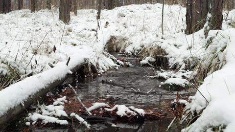 Glitch effect. Stream through snow. It's snowing. Russia Footage