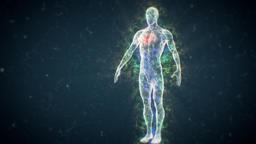 Human Liquid Body Reveal Human Energy Body Animation