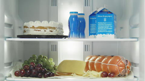 open domestic fridge with different products on shelves Live Action