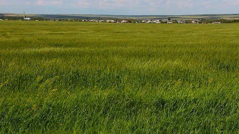 Rural Settlement stock footage
