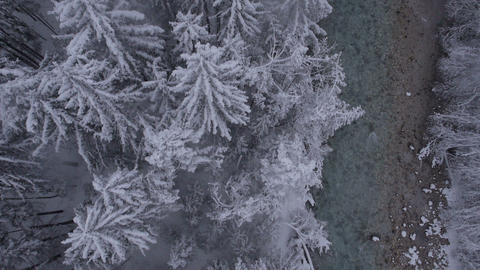 Aerial, vertical - River and snow covered trees at a light snowing Footage