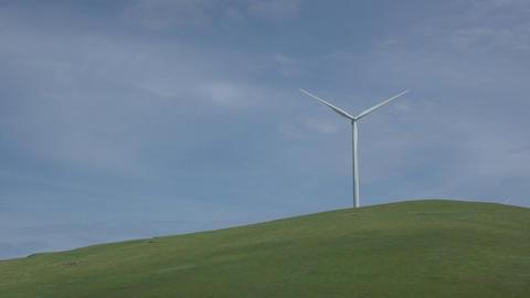 Single turbine in a Californian wind farm Live Action