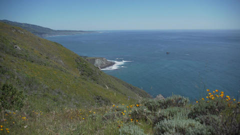 Right pan of pacific ocean and poppies Footage