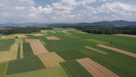 Aerial - Panorama of fields with various types of agriculture Footage