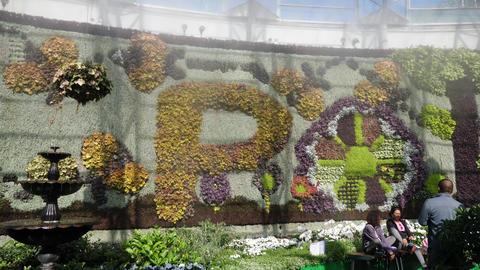 The Calyx, Pollination Exhibition at the Royal Botanic Gardens Sydney Australia Footage