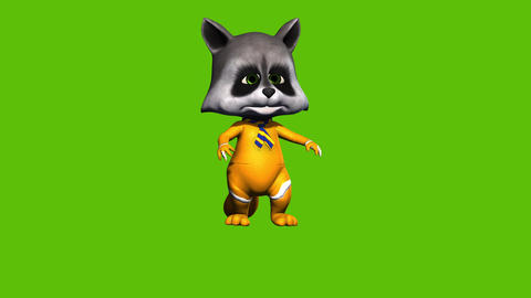04 animated 3D cartoon raccon without glasess on green screeen background Animation