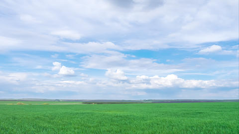 timelapse, green spring field with clouds. spring mood Live Action