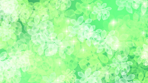 new leaves fresh green background2 Animation