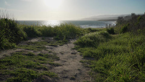 Peaceful path leading to beach near Point Conception State Marine Reserve Footage