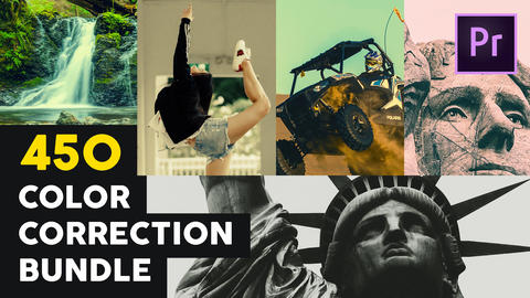 450 Color Correction Bundle