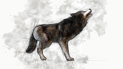 Digital Animation of an artistic Sketch, based on a self-created 3D Illustration of a Wolf, GIF