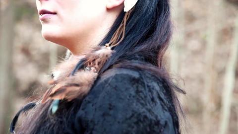 Celtic Woman In Autumn Landscape Vol2