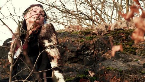 Celtic Woman In Autumn Landscape Vol1