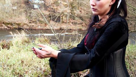 Celtic Woman In Autumn Landscape Vol1 1