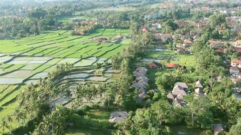 Aerial view of Ubud Bali Footage
