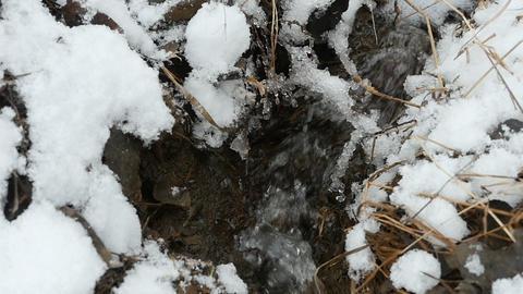 little Stream of melt water Footage