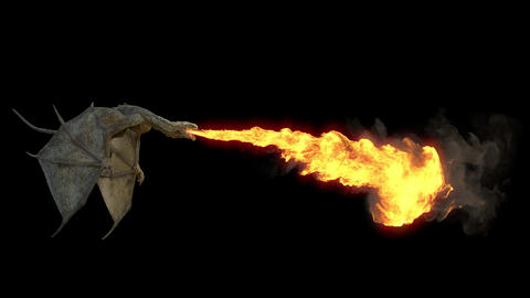 The Dragon flying and breathing flame. Seamless loop with Alpha channel GIF