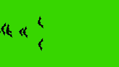 Group of Bats Flying From One Side to Another on a Green Screen GIF