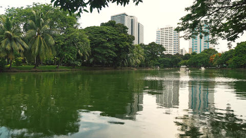 Beautiful view from the green park to the skyscrapers. A lake in the city park Live Action