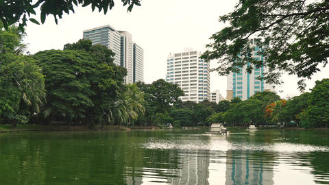 City Park to rest and sports activities in the center of metropolis. Beautiful GIF
