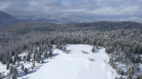 Aerial - Snowy Field And Snow-covered Forest With A Misty Sky stock footage