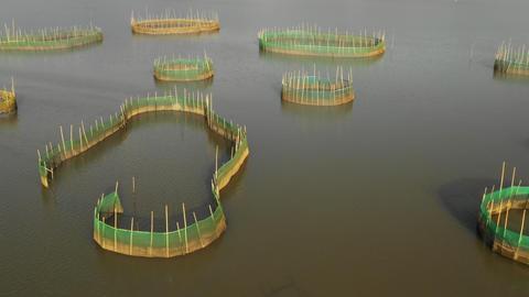 Flying over fishing nets on the coast of China GIF