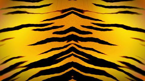 tiger000299 CG動画