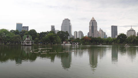 Urban skyline, downtown buildings reflected in the water. Large green Park with Live Action