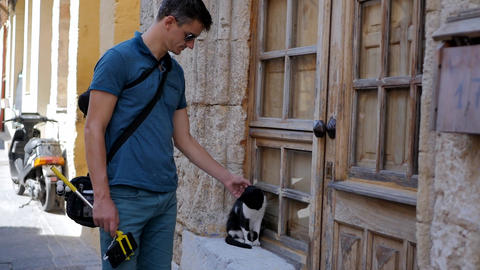 man stroking a cat Live Action