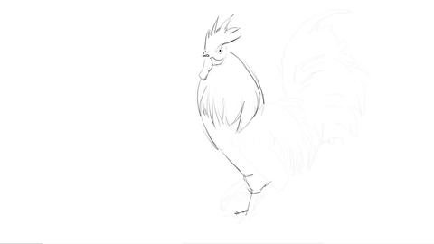 Hand drawing Of A Rooster - Art Process Animation