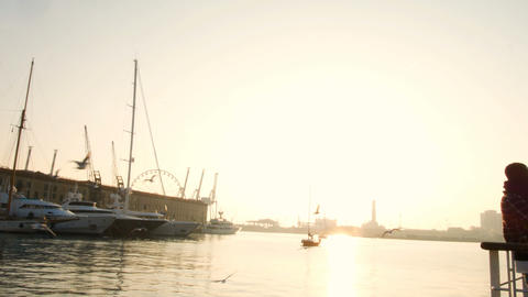 sailboat at sunset in the ancient port of Genoa, seagulls flying in the sky Archivo