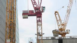 Construction Cranes at Work Site Live Action