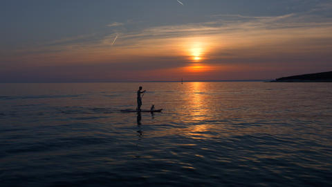 Aerial - Silhouettes of a man and a dog on SUP board at sunset Footage