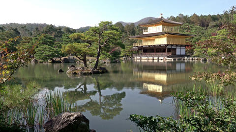 Temple of the Golden Pavilion Kinkaku-ji, Kyoto Japan GIF