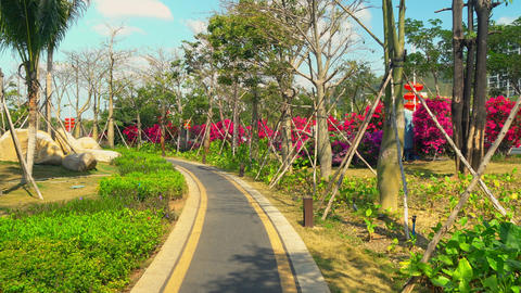 Colorful greenery in a big city Footage