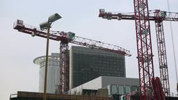 Construction Cranes and Office Buildings Live Action