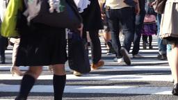 Congested Tokyo Shibuya crossing (pedestrian-feet) Footage