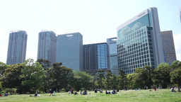 People who enjoy a picnic in the city park(Tokyo , Japan) Footage