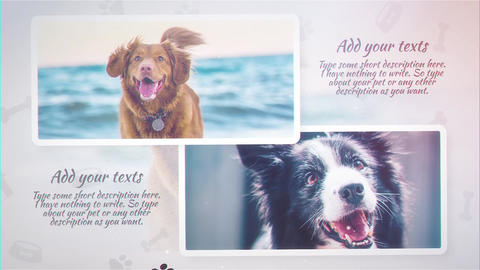Pet Slideshow After Effects Template