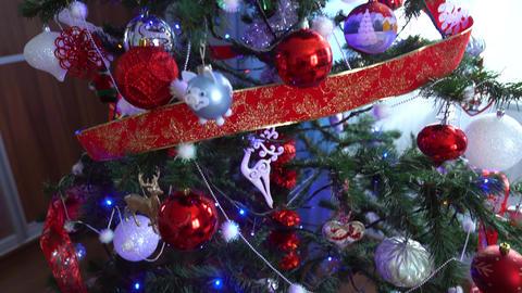 Christmas decoration on tree with Christmas lights. Pig ball 2019 Footage