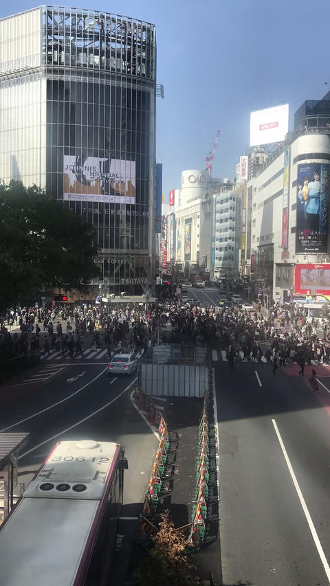 SHIBUYA CROSSING in the daytime of Saturday :Timelapse shot in portrait mode Footage