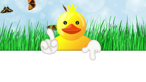 Funny Squeaky Duck Cartoon Animation 1