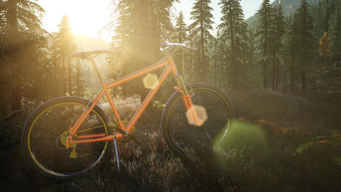 bicycle in mountain forest at sunset Footage
