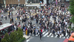 Congestion to Japan in Tokyo's Shibuya intersection (scramble intersection) Footage