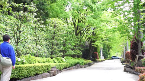 Men walk a refreshing green road. 爽やかな緑道を歩く男性 Live Action