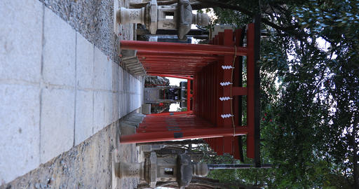 Big religious gate at Hanazono shrine in Tokyo vertical shot Live Action