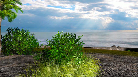 18 3d animated landscape of tree and bushes on beach Animation